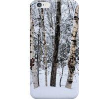 Elders in a High Country Grove iPhone Case/Skin