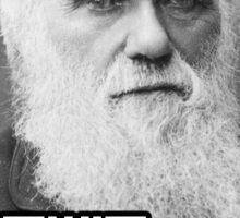 Darwin Darwin Revolution Sticker
