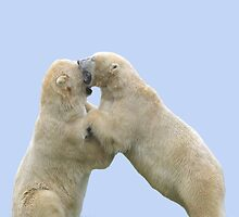 Polar Bears at Play by LoneAngel