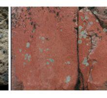 Lichen  Sticker