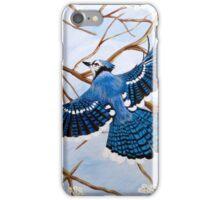 Soaring Blue Jay iPhone Case/Skin