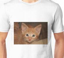 Kitten Douglas Unisex T-Shirt