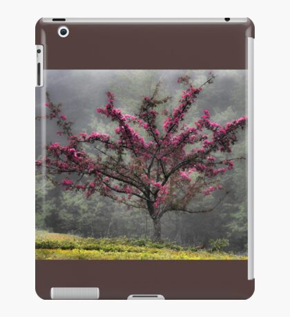 Apple Blossoms - Looking Back at the Beauty of Spring iPad Case/Skin