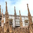 thousands of statues. Duomo de Milano. by terezadelpilar ~ art & architecture