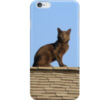Cat on a Warm Shingle Roof iPhone Case/Skin