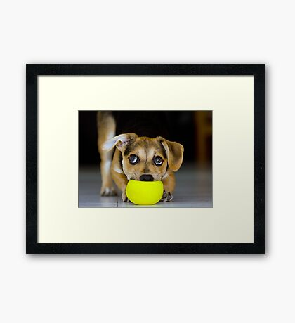 have to play Framed Print