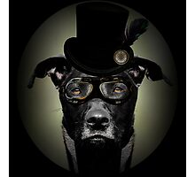 4.	Dapper Eduardian Pit Bull in Steampunk Gear Photographic Print