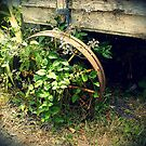 Old Wagon Wheel at the General Store by Martha Sherman