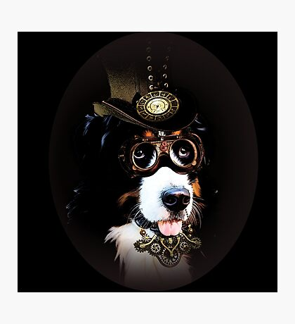 5.Cheerful Steampunk Bernese Mountain Dog with Hat and Goggles Photographic Print