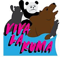 Viva La Kuma! Photographic Print