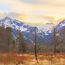 Rocky Mountain Wilderness Sunset View by Bo Insogna