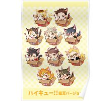 Haikyuu!! Cats! Poster