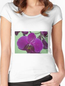 Orchid Macro Women's Fitted Scoop T-Shirt