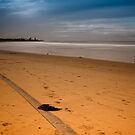Sand tracks 001 by kevin chippindall