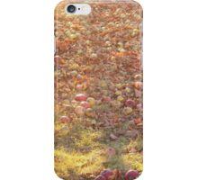 Late Harvest iPhone Case/Skin