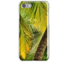 Cocos Palm Fronds iPhone Case/Skin