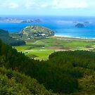 Matauri Bay Overlook Pano by Barbara  Brown