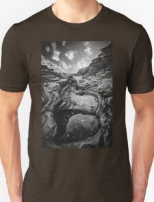 Planet Big Bend Unisex T-Shirt