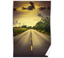 Louisiana Highway 82, an ample opportunity to see gators crossing the road Poster