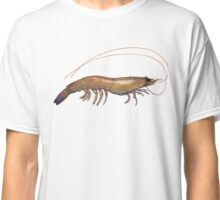 Eastern King Prawn (Melicertus plebes) Classic T-Shirt