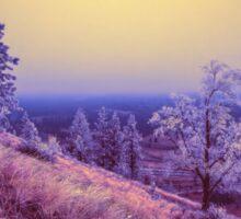 Winter in Spokane Sticker