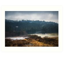 Mists of Vancouver Island Art Print
