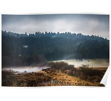 Mists of Vancouver Island Poster