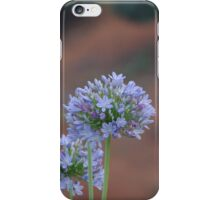 Flower in Limpopo South Africa iPhone Case/Skin