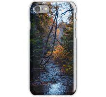 Dank forest iPhone Case/Skin