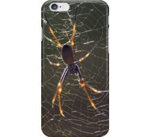 Orb Web iPhone Case/Skin
