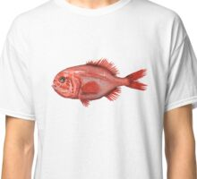 Fish - Orange Roughy (Hoplostethus atlanticus) Classic T-Shirt