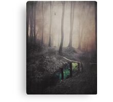 Green creek - Eye of the forest Canvas Print