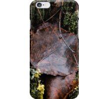 Brown leaves iPhone Case/Skin