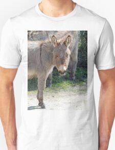 New Forest donkey Unisex T-Shirt