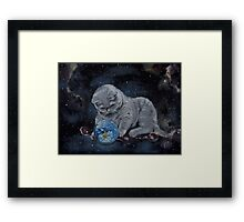 play instinct Framed Print