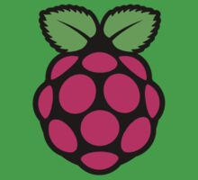 Raspberry pi One Piece - Short Sleeve