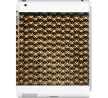 Stars for the Fallen - Washington DC iPad Case/Skin