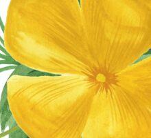 Summer watercolor beautiful tropical flower Sticker
