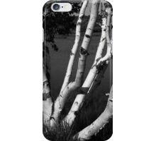 Pontook Birch and Rowboats Monochrome iPhone Case/Skin