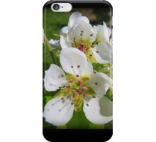 Peach blossom iPhone Case/Skin