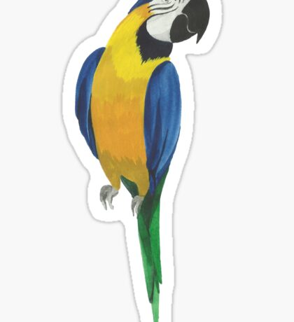 Summer watercolor beautiful tropical parrot Sticker