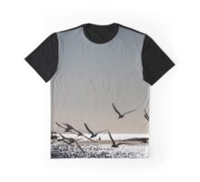 Black Skimmer birds silhouetted over Santa Barbara beach Graphic T-Shirt