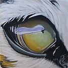 Tigers eye by Carole Russell