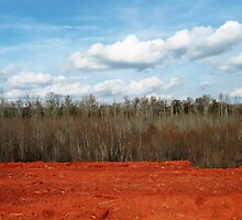 Sky, Swamp, and Red Clay© by walela