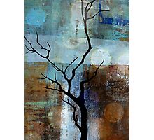 Nature tree Photographic Print