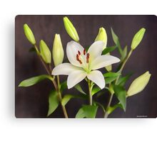 White Lilies in Vase Canvas Print