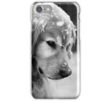 Dog in the Snow iPhone Case/Skin