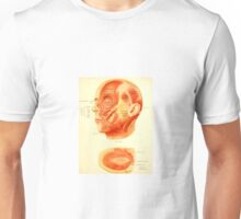 historical anatomy chart of head Unisex T-Shirt