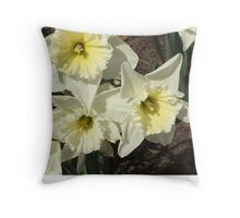 Spring Flowers - Snow Daffodil Throw Pillow