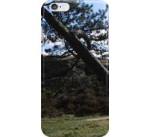 Weathered by the Storms, Ilkley Moor iPhone Case/Skin
